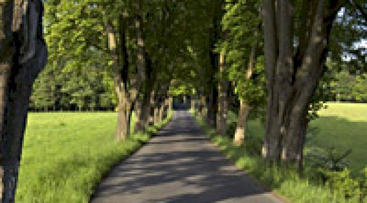 Fotografie silnice k nám